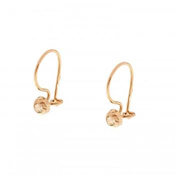 Auksiniai graviruoti auskarai su cirkoniu